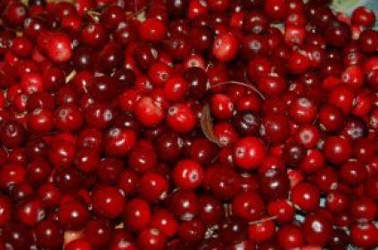 cranberries-957583_640