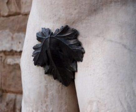 fig-leaf-1657854_640