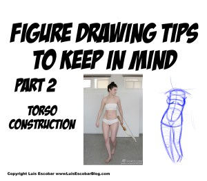 Figure drawing tips to keep in mind part 2 Torso Construction