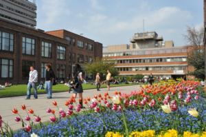 Hull University campus