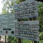Ingresso a Camp Leakey