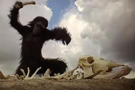 2001 odissea nello spazio scimmie
