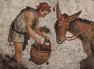Favola dell'asino d'oro di Apuleio in un mosaico bizantino