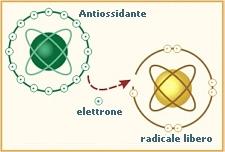 antiossidante_04