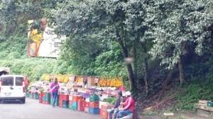 Il mercatino variopinto della frutta
