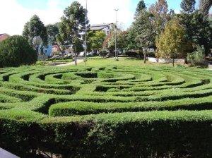 L'ultimo incontro con il labirinto verde, Nova Petropolis