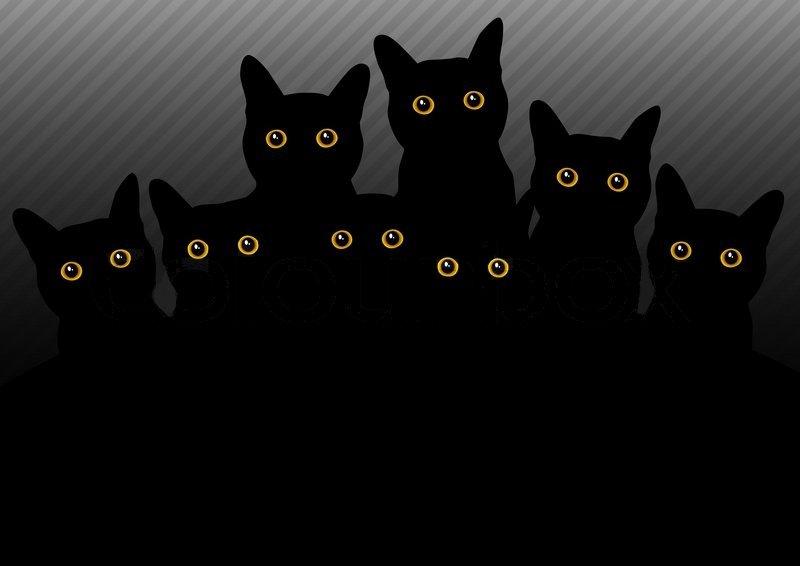 catsss