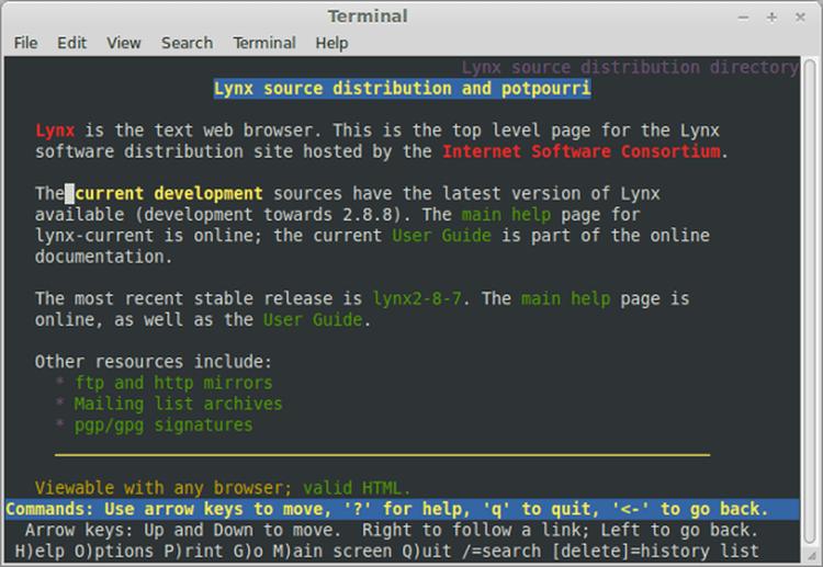 Lyne è un browser testuale nato nel 1992 nell'Università del Kansas (USA)
