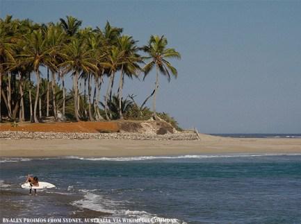 Cabarete Surf Camp - Haven for Kitesurfers