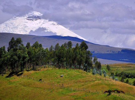 Ecuador-Land-of-Amazing-Experiences