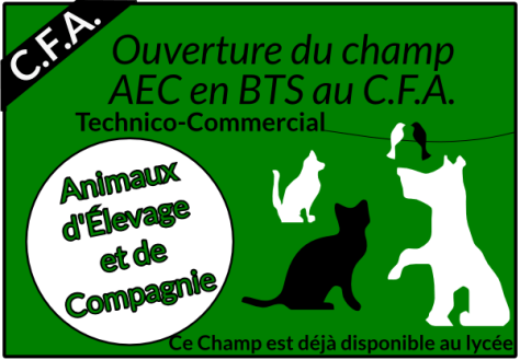 animaux-elevage-compagnie
