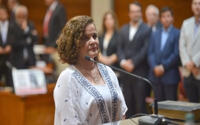 Cynthia Alvarado juró como Diputada Provincial