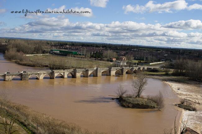 The bridge of 17 arches over the Pisuerga River