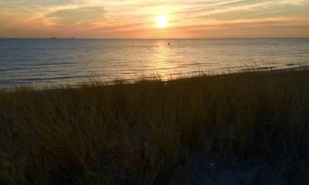 40 dagen stoppen met (18): strand bij Vlissingen