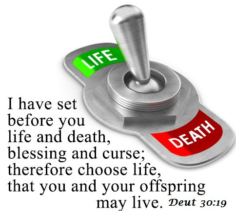 lifeanddeath
