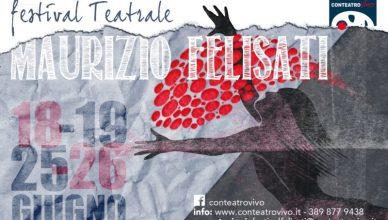 Locandina Festival Maurizio Felisati