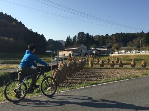 Village forest cycling! ... Iritani edition ...