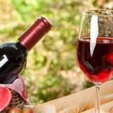 【南三陸でワイン?】南三陸ワインプロジェクト