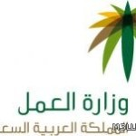 وزارة العمل : إغلاق 2500 مدرسة والتربية تعترض