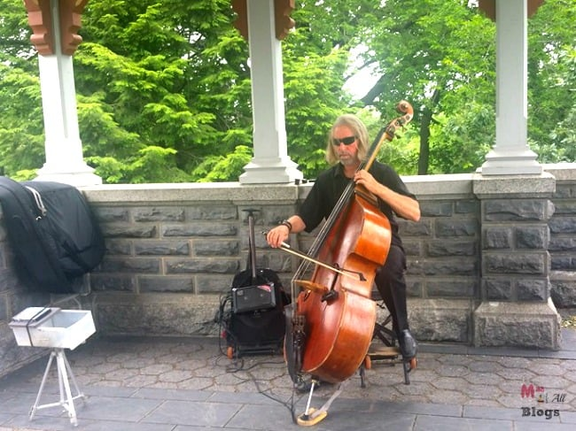 musician in Central park