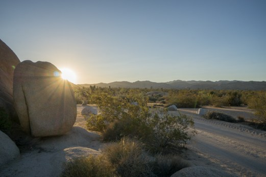 Joshua Tree Park California-15