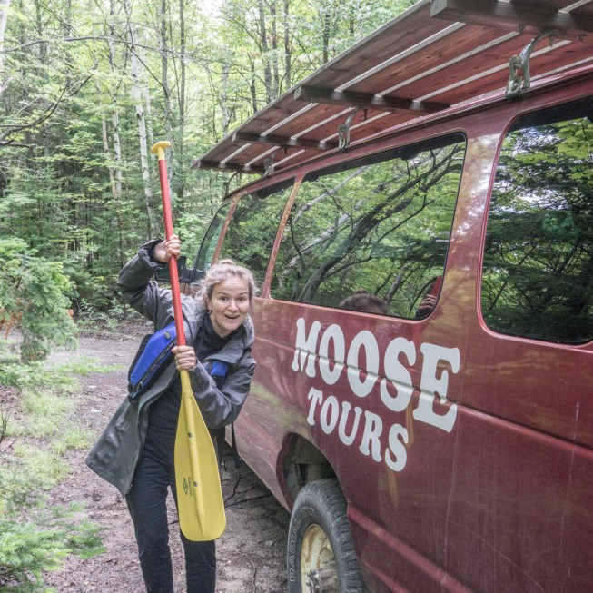 Moose Tour Maine-10