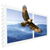 Mail perspectives 2 icon