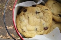 cookie_200