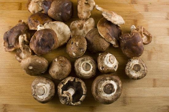 shrooms for Mushroom Leek Galette
