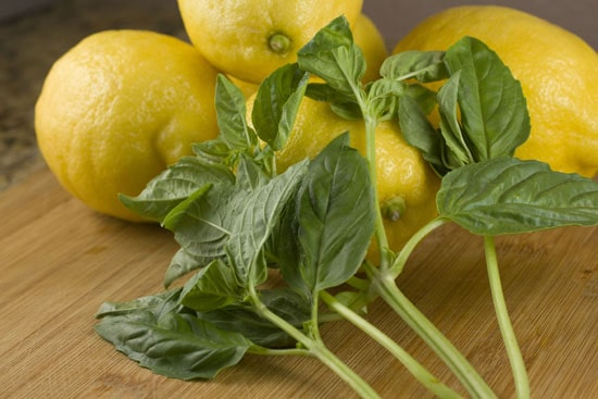 basics for Fresh Basil Lemonade