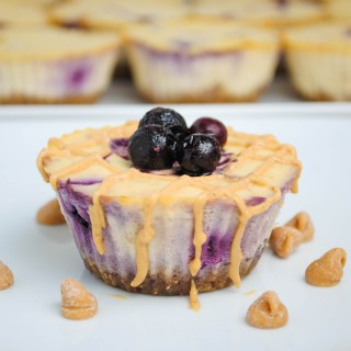 Blueberry Peanut Butter Protein Cheesecake
