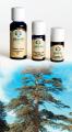 Cedro (atlante) Legno - Olio Essenziale 10 ml. (3080-10)