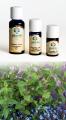 Menta Piperita - Olio Essenziale 10 ml. (2080-10)