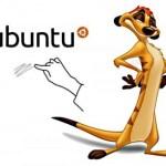 "Ubuntu 10.10 ""Maverick Meerkat"" tendrá soporte multitouch"