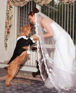 """""""Plus, what's next --marrying dogs?"""""""