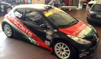 Peugeot 207 S2000 Piparo-Barreca