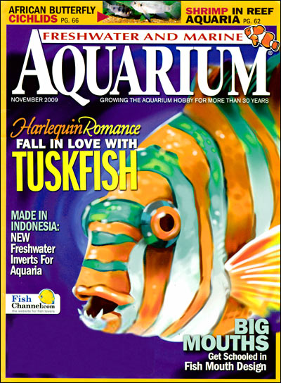 Aquarium Fish Magazine on Aquarium Magazine Freshwater And Marine