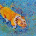 psie portrety ze zdjęcia warszawa