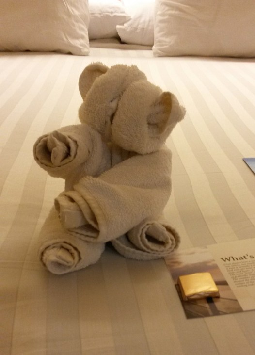 Every night, I'd come back to my stateroom and find a towel animal on my bed. And a chocolate.
