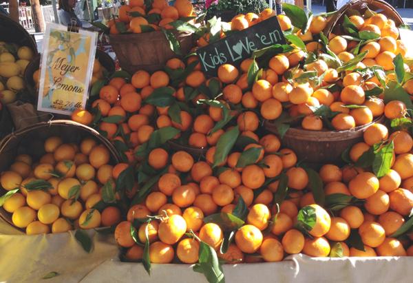 oranges-farmers-market-gussy-sews