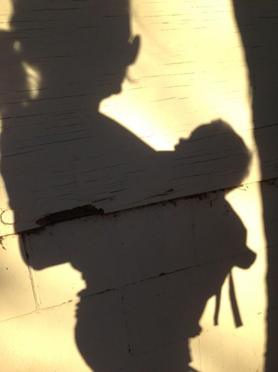 mama-shadows-maggie-whitley