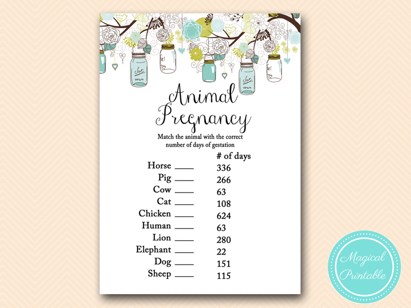animal-pregnancy-gestation-game-rustic-teal-mason-jar-baby-shower-game-tlc146 Water Balloon Baby Shower Game