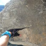 A rock shaped like a dinosaur face