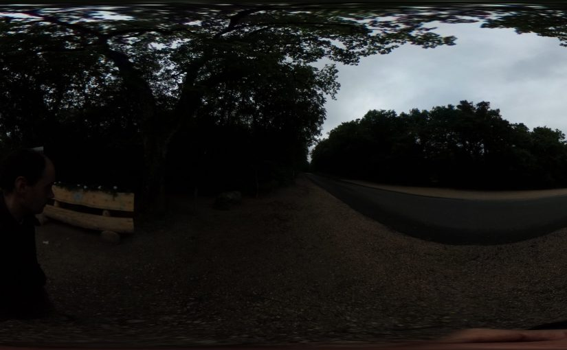 A 360 timelapse walk through the woods