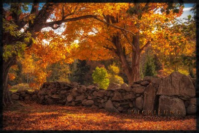 MaineFoliage.com: Photo Gallery: The Best of the Years Past