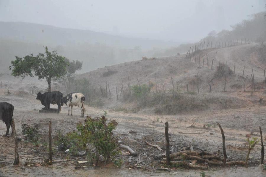 Resultado de imagem para imagens chuvas no sertao