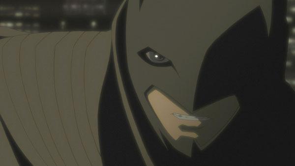 Bat_05-seg3sm.jpg