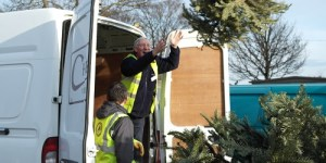East Cheshire Hospice Christmas Tree Collection