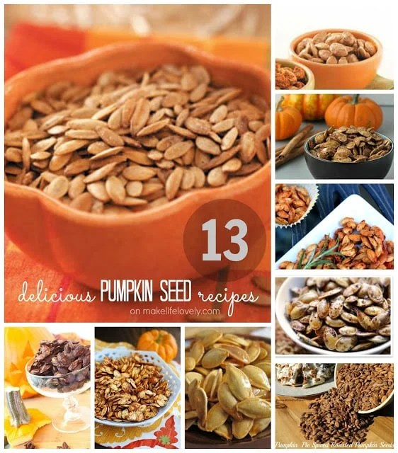 13 Delicious roasted pumpkin seed recipes you NEED to try!