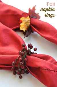 DIY Napkin Rings for Fall